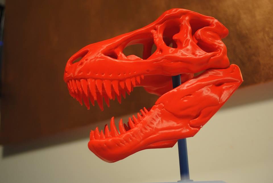 Modello del cranio di T-rex realizzato dalla stampante 3d Galileo Smart