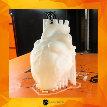 cuore-kentstrapper-stampanti-3d-made-in-italy-roma-milano-firenze-1