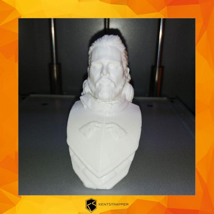 kenstrapper-stampanti-3d-stampe-3d-homy-8